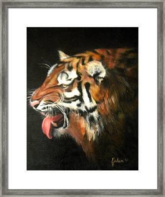 My Tiger - The Year Of The Tiger Framed Print