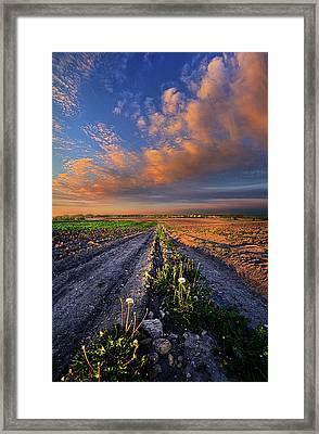 My Way Framed Print by Phil Koch