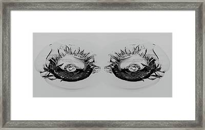 My What Pretty Eyes You Have Framed Print