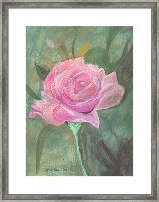 My Wild Irish Rose Framed Print by Carole Clark