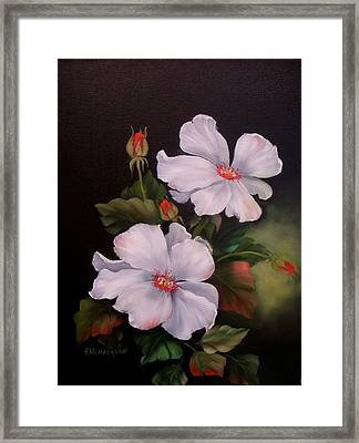 My Wild Rose Framed Print by Francine Henderson