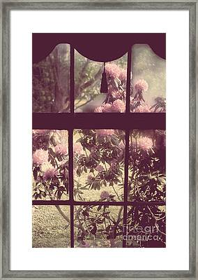 My Window Framed Print by Mindy Sommers