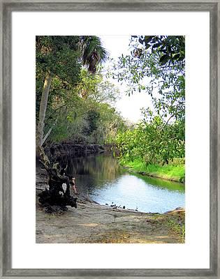 Myacca Scenic Framed Print by Rosalie Scanlon