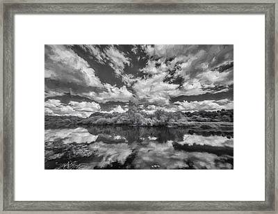 Myakka Dream II Framed Print by Jon Glaser