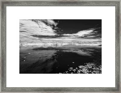 Myakka Placidity Framed Print by Jon Glaser