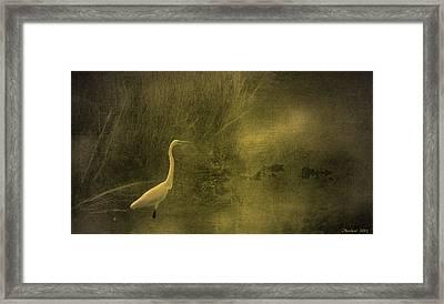 Myrtle Beach Crane Framed Print