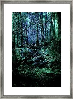 Mysteries Along The Creek Framed Print