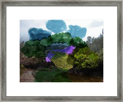 Mysteries In The Chapparal Framed Print