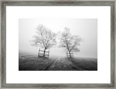 Mysterious Path Surrounding By Trees In Black And White Framed Print by Mikel Martinez de Osaba
