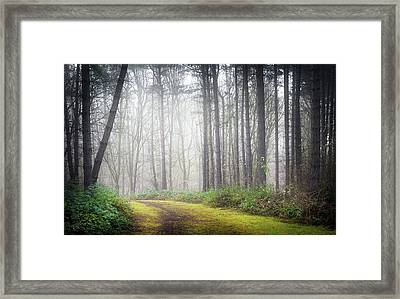 Mysterious Path Framed Print by Svetlana Sewell