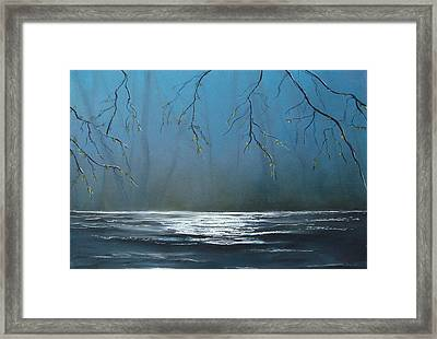 Mysterious Water Framed Print by Veronique Radelet
