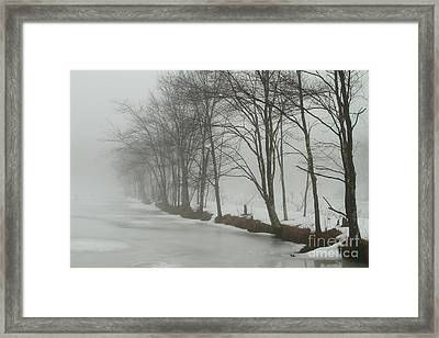 Mysterious Winter  Framed Print by Karol Livote