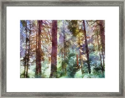 Mysterious Wood Framed Print