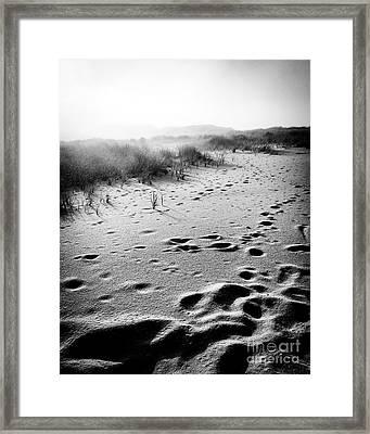 Mystery Beach Framed Print by JMerrickMedia