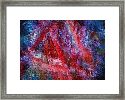 Mystery Flower Framed Print by Sue Reed