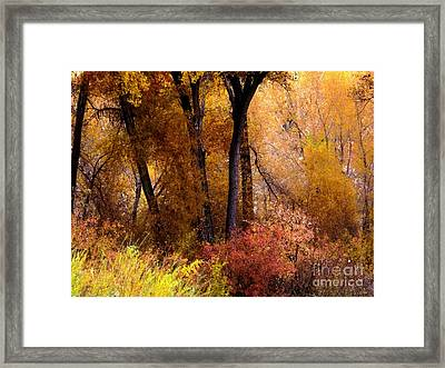 Mystery In Fall Folage Framed Print by Annie Gibbons