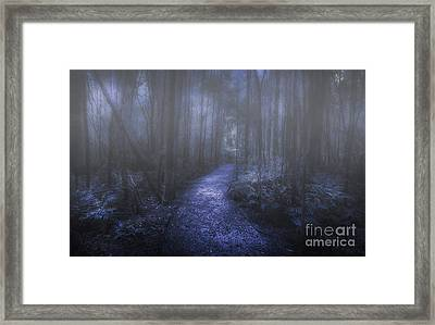 Mystery Pathway Framed Print