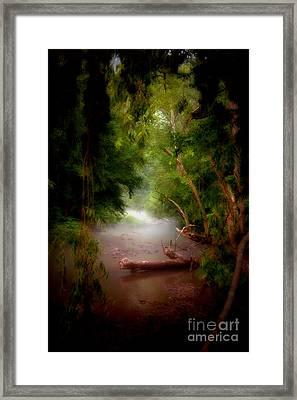 Mystic Creek Framed Print