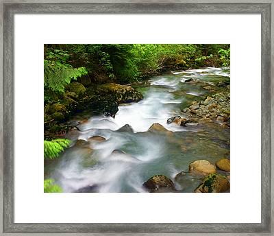 Mystic Creek Framed Print by Marty Koch