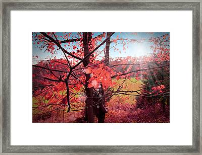 Mystic Day  Framed Print