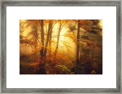 Mystic Fog Framed Print