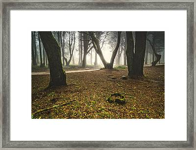Mystic Forest I Framed Print by Marco Oliveira