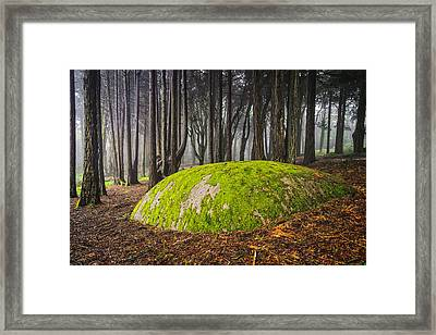 Mystic Forest II Framed Print by Marco Oliveira