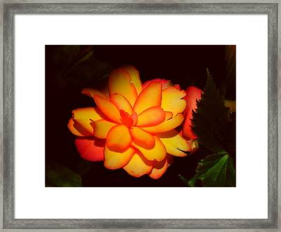 Mystic Framed Print by Juergen Weiss