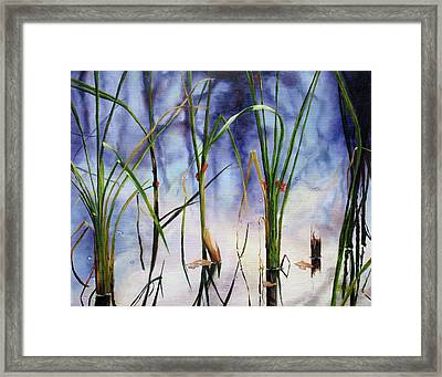 Mystic Pond Framed Print