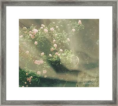 Mystic  Roses Framed Print