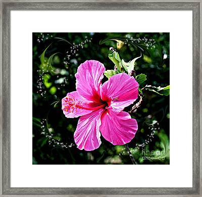 Framed Print featuring the photograph Mystical Bloom by The Art of Alice Terrill