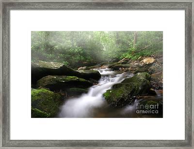 Mystical Framed Print by Darren Fisher