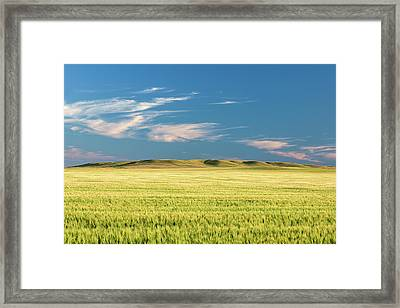 Mystical Field Framed Print