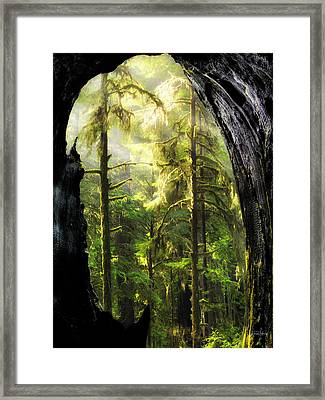 Mystical Forest Opening Framed Print by Leland D Howard