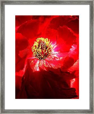 Mystical ... Framed Print by Juergen Weiss