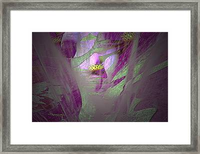 Mystical Mermaid Framed Print by Irma BACKELANT GALLERIES