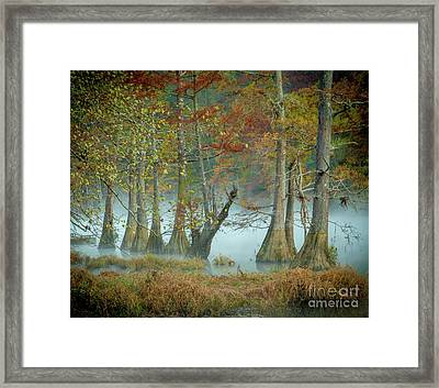 Framed Print featuring the photograph Mystical Mist by Iris Greenwell