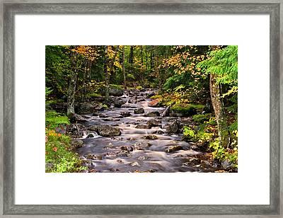 Mystical Mountain Stream Framed Print by Brad Hoyt