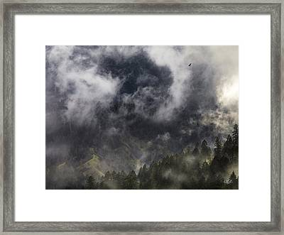 Mystical Soaring Framed Print by Leland D Howard