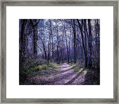 Mystical Trail Framed Print