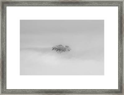 Mystique Framed Print by Az Jackson