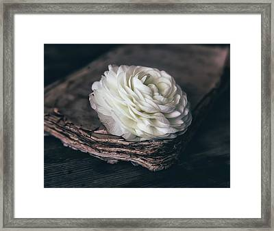 Framed Print featuring the photograph Mystique by Kim Hojnacki
