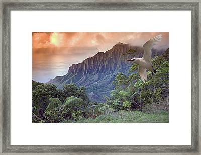 Na Pali Coast Framed Print by Dave Fleetham - Printscapes