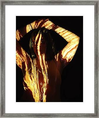 Nadia Framed Print by Arla Patch
