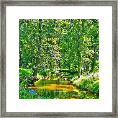 Framed Print featuring the photograph Nadine's Creek by Kathy Kelly