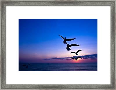 Nags Head Sunrise Framed Print
