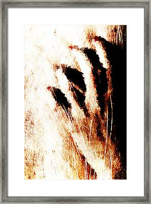 Nails Framed Print by Andrea Barbieri