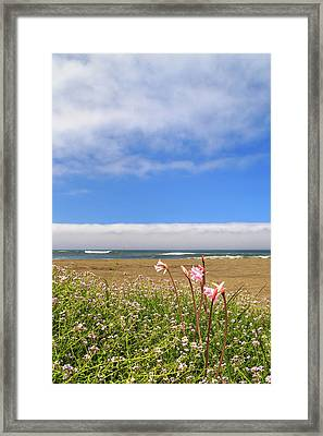 Framed Print featuring the photograph Naked Ladies At The Beach by James Eddy