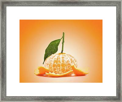 Naked Orange Framed Print by Wim Lanclus
