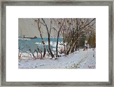 Naked Trees By The Lake Shore Framed Print by Ylli Haruni